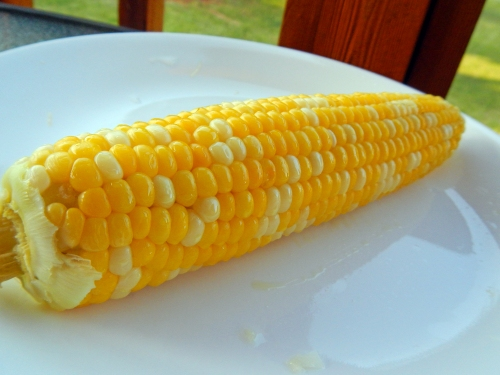 eating sweet corn