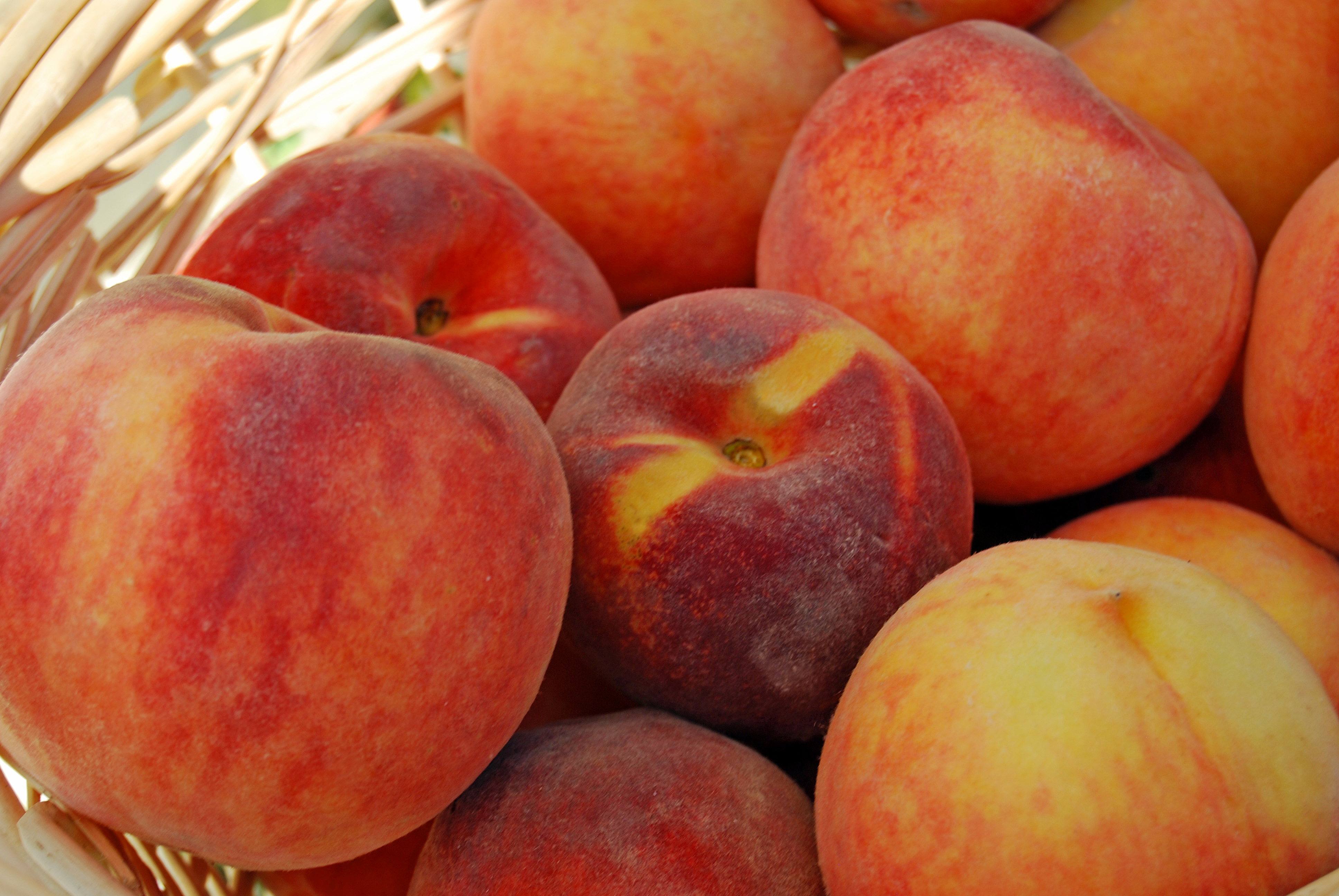Peaches Nude Photos 7